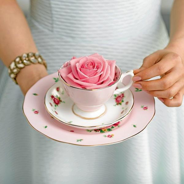Tableware & Teaware