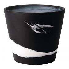 Wedgwood Burlington Pots White on Black Pot 7inch